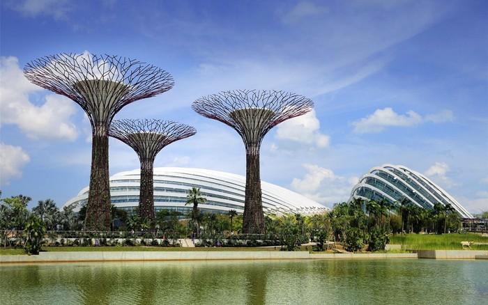 Прибрежные сады - ботанический сад в Сингапуре