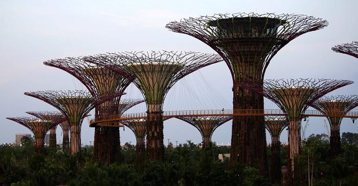 Gardens by the Bay - ботанический сад в Сингапуре
